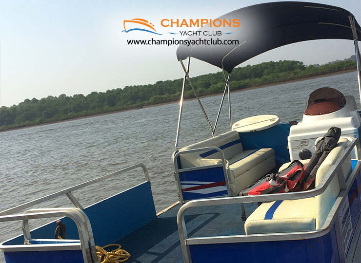 Champion Pontoon Cruiser